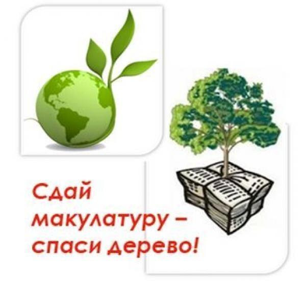 Сберечь дерево макулатура сколько стоит макулатура в омске